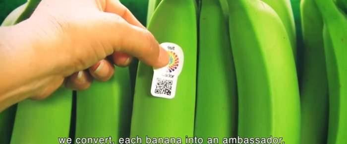 Tourism Marketing Video